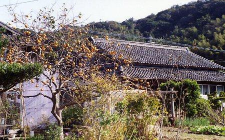 saruhami253.jpg